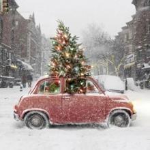 JOYEUX NOËL 🚗 🎄 - On vous souhaite à toutes un merveilleux Noël, plein de magie et d'amour avec vos proches ❤️⠀⠀⠀⠀⠀⠀⠀⠀⠀ 📸 DM US ⠀⠀⠀⠀⠀⠀⠀⠀⠀ -⠀⠀⠀⠀⠀⠀⠀⠀⠀ #joyeuxnoel #mereyxmas #xmastree